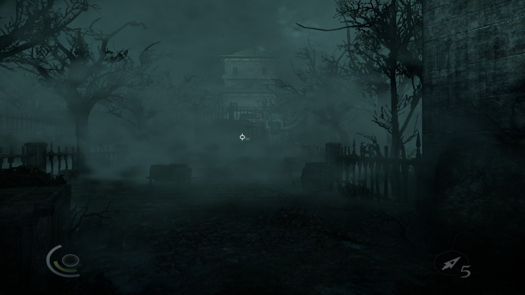 Das Irrenhaus Moira Asylum