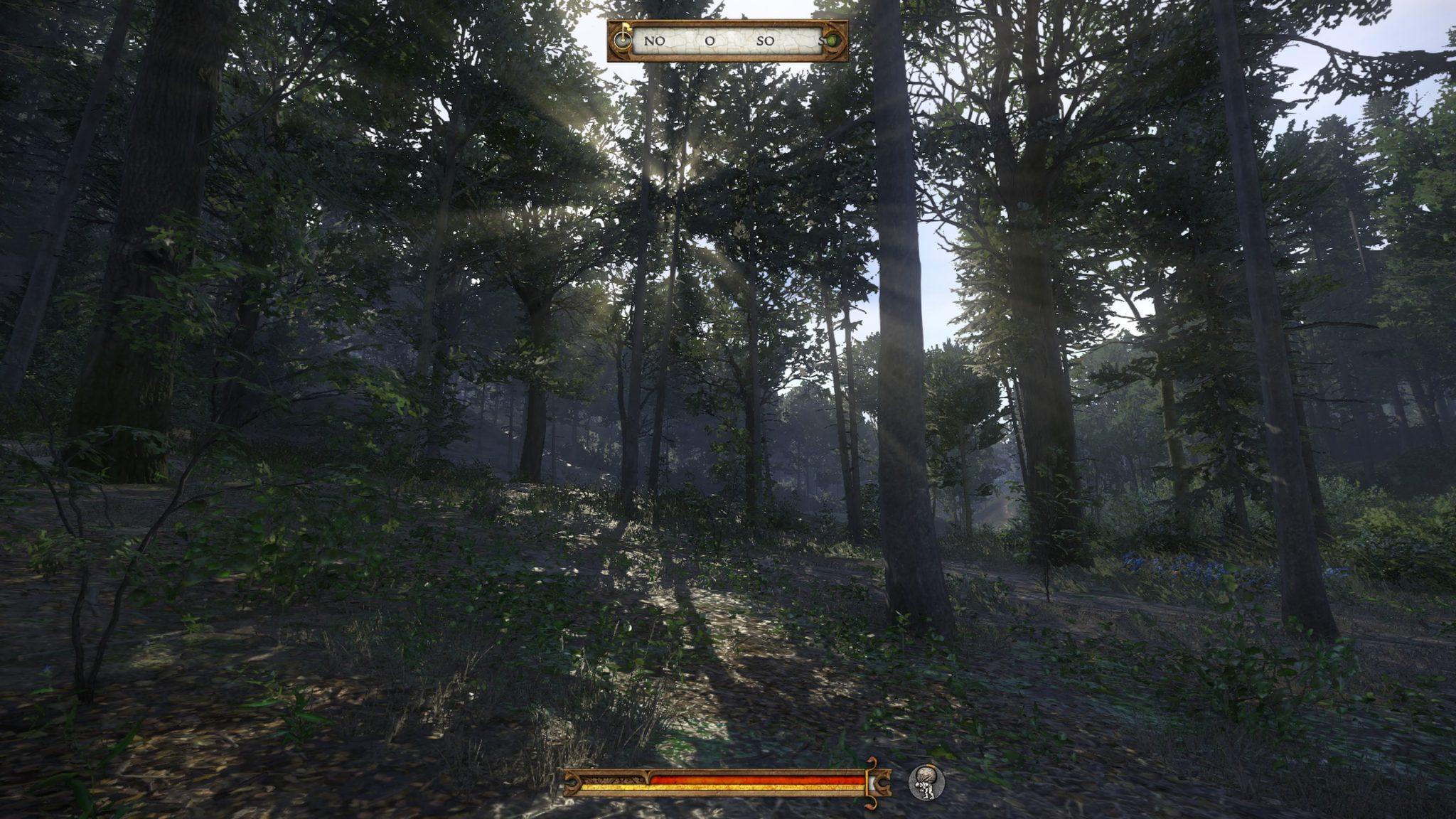 Die Wälder sind einfach extrem atmosphärisch.