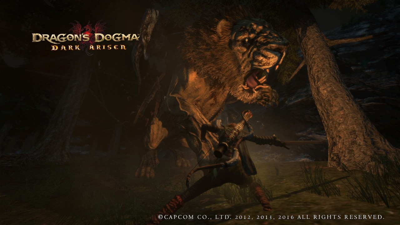 Dragons Dogma- Dark Arisen-11