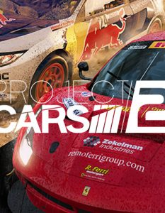 project cars 2 mail 233x300 - Project Cars 2 - Test (PS4)